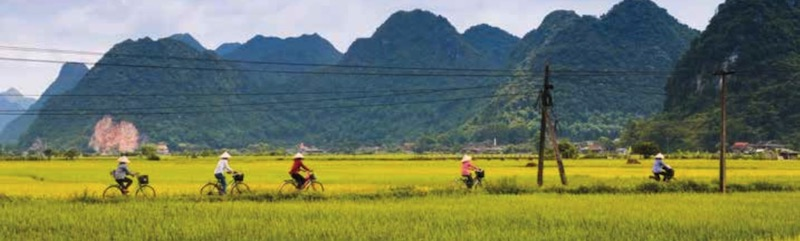 Cycling in South East Asia with Exodus Travels