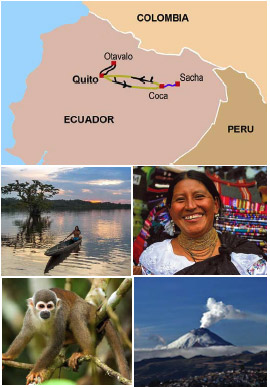 Discover the Andes and Amazon.