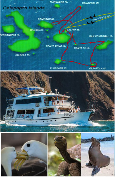 Cruise the wonderland of the Galapagos.