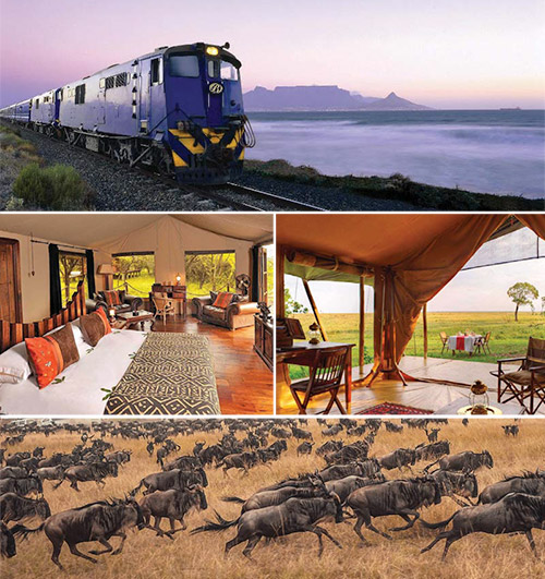 The Best Of Africa In One Exclusive Air & Train Tour