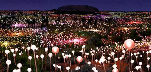 Field of Light tour.